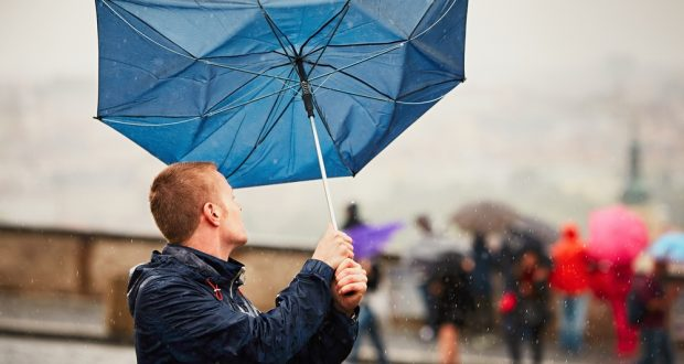 5 Steps to Take After A Heavy Rain - WatsonsHealth